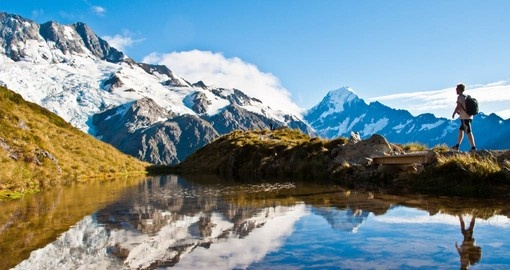 One of the best time to visit New Zealand is in the spring when Mt. Cook is surrounded by wildflowers