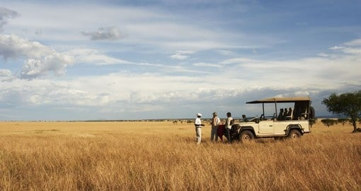 Game Drive on the plains of the Serengeti