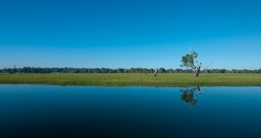 The wide open landscape of Yellow Water Cooinda is a perfect place to visit on your Trip to Australia