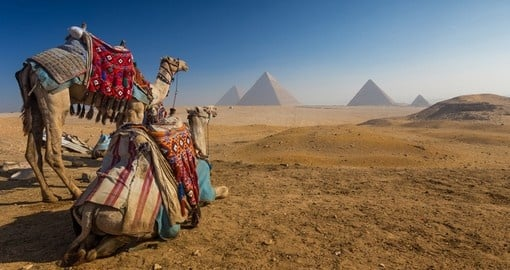 The pyramids of Egypt from the plains of Giza - a must inclusion to be seen on your African trip.