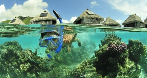 Snorkel in the warm south pacific waters on your Tahiti vacation