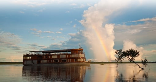 Cruising in the Amazon