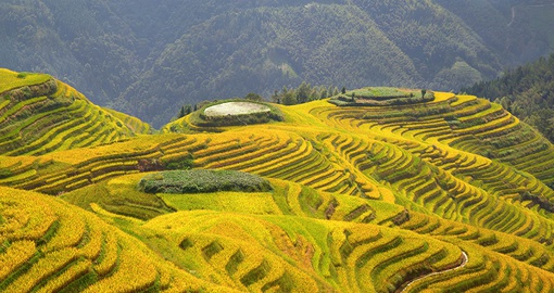 Take in the incredible landscape of the Longsheng rice terraces on your China Tour