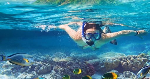 the Red Sea is the best snorkelling spot for your Egypt vacation.