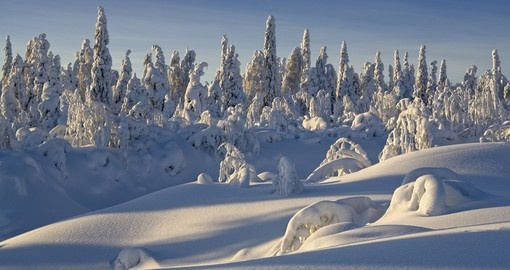 Winter wonderland - Siberia