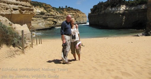 Great Ocean Road Scenery pic by Echidna Walkabout Nature Tours