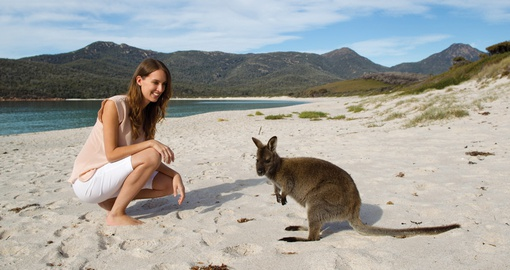 Meet the locals at Wineglass Bay
