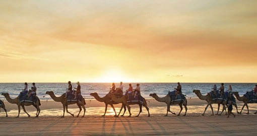 A Sunset Camel Ride in Broome is a great inclusion on Australia vacations.