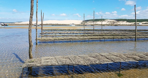 Oyster farm in the Bay of Arcachon