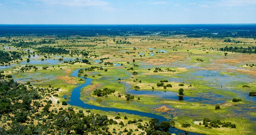 Enjoy the beauty of the Okavango Delta on your trip to Botswana