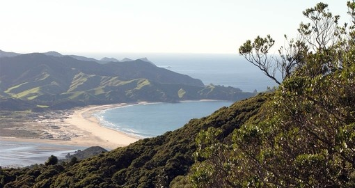 Experience the Great Barrier Island on your New Zealand Vacation