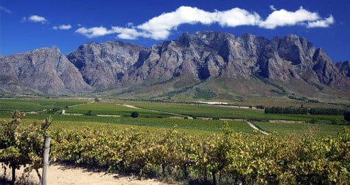The Franschhoek Valley is one of South Africa's premier wine producing regions
