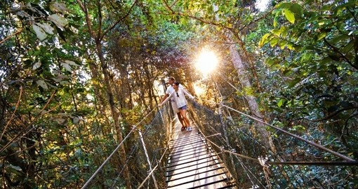 This Australia tour features many optional activities including O'Reilly's Tree Top Walk.