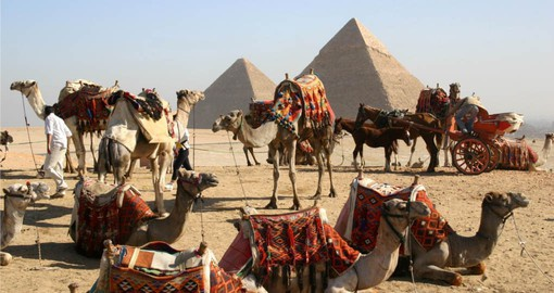Visit the Great Pyramids by Camel