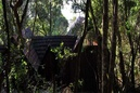 Phantom Forest Eco Lodge