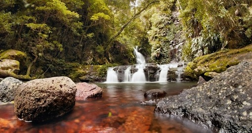 Explore Lamington National Park on your next trip to Australia.