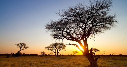 Beautiful African sunset in the Park