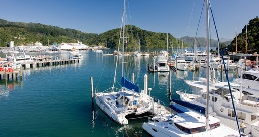 Picton marina is a great photo opportunity while on your New Zealand vacation.