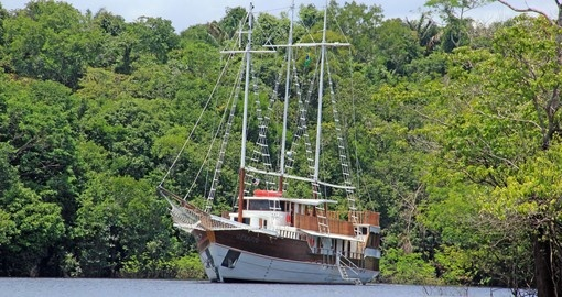 Desafio cruising the Amazon