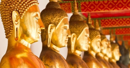 Marvel in the beauty of the golden Buddha Statues at Wat Pho on one of the magnificent Thailand Tours