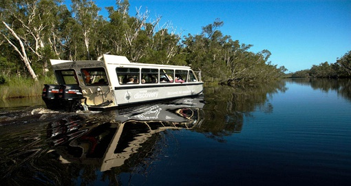 Experience Everglades Eco Cruise on your next trip to Australia.