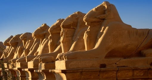 Sphinxes in Luxor temple