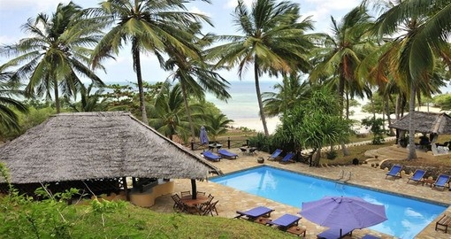 Experience this amazing beach views and tall palms during your next trip to Tanzania.