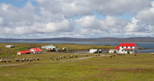 Contryside Falkland Islands