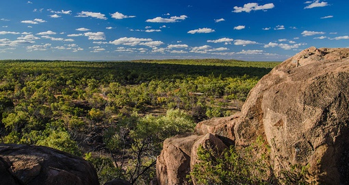 Explore bush land in Undara Volcanic National Park on your Australia Vacation