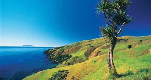 Beautiful Coromandel, near Auckland