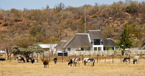 Visiting an African farm near Gaborone is a unique inclusion to your Botswana safari.