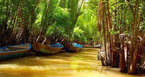 "Mekong Delta has recently been dubbed a 'biological treasure trove"" and is a great addition to your Vietnam vacation."