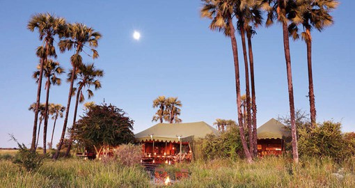 One of the most legendary and iconic camps in Southern Africa, Jack's Camp was founded in the 1960's