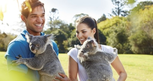Your Australia vacation includes a visit to Lone Pine Koala Sanctuary in Brisbane.