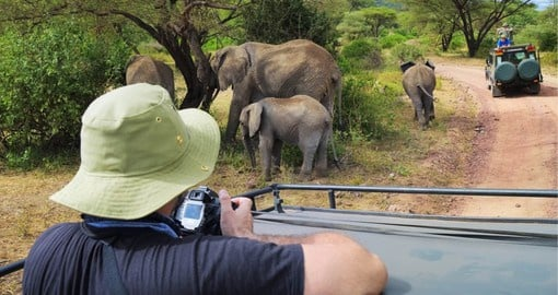 Game drive in Lake Manyara National Park
