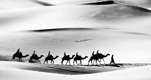 A caravan in the Sahara Desert makes for a great photo opportunity on all Morocco tours.