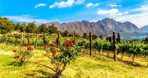 Explore the beautiful Franschhoek Valley on your South African vacation