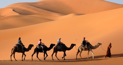 Camel caravan through the Sahara