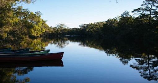 Experience Everglades Sandpatch Safari on your next Australia tours.