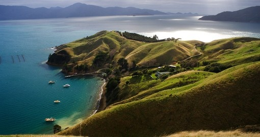 Green slopes and a coastal farm on the Marlborough Sounds