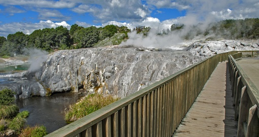 Walk along the wooden path that surrounds the Whakarewarewa Geyser at Te Puia and experience a natural phenomenon on your New Zealand Vacation