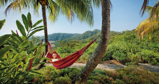 Lounge in a hammock or take a relaxing stroll through Daintree on one of your Australia Tours.