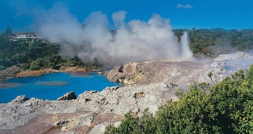 Visit New Zealand's Geothermal center in Rotorua for nature in its purest form during one of your Tours of New Zealand.