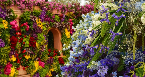 Enjoy the beauty of rare flowers at the Chelsea Flower Show on your London Vacation