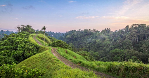 Explore stunning Ubud on your Indonesia vacation