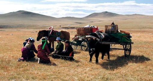 Transporting goods across the steppe