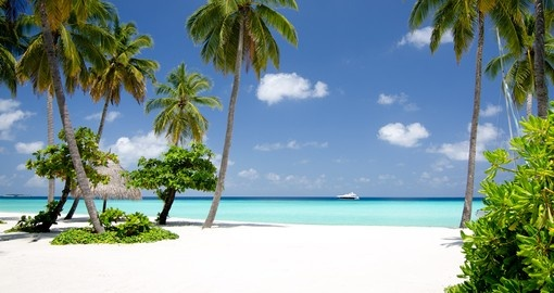Relax, walk or go on a jog on the 4 mile stretch of white sand beaches on you Trip to Maldives