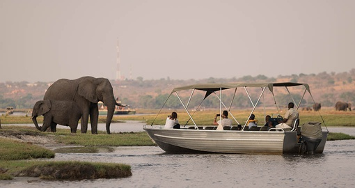 See the big 5 on your Botswana Safari