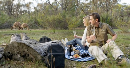 Your Australian Tour includes the unique experience of breakfast with the Kangaroos