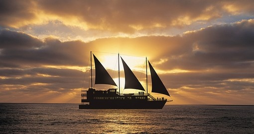 Enjoy Milford Mariner at Sunset during your next New Zealand tours.